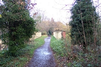 Compton halt looking towards Tettenhall