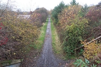 Trackbed to Baggeridge Colliery
