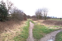 Pelsall station site towards Brownhills