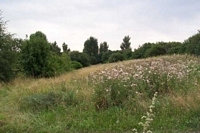 Withymoor goods station site